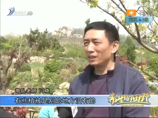 希望的田野 2018-05-07