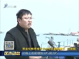 """荣成:以""""渔区振兴""""推动乡村振兴 促进渔业经济提质增效"""
