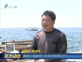 荣成:春参捕捞正当时