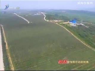"""威海农产品进京  展示本土""""金疙瘩"""""""