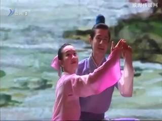 威高集团三十周年庆典中国残疾人艺术团专场演出