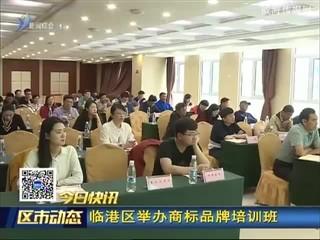 临港区举办商标品牌培训班