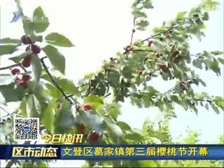 文登区葛家镇第三届樱桃节开幕