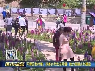 环翠区张村镇:改善乡村生态环境 助力美丽乡村建设