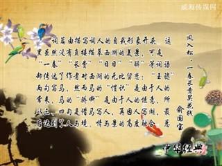 0707中华经典-诗词赏析-风入松·一春长费买花钱