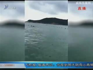 一男子横渡刘公岛失败求助 民警出海救助
