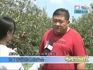 希望的田野 2018-08-07
