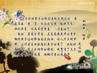0713中华经典-诗词赏析-双双燕·咏燕