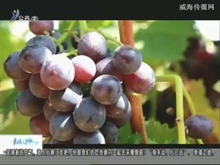 幸福之旅 2018-9-11(18:08:14-18:25:14)