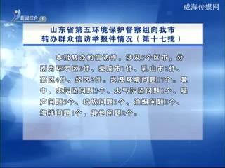山东省第五环境保护督察组向我市转办群众信访举报件情况(第十七批)