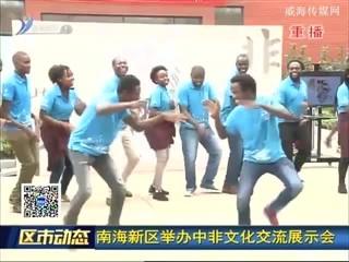 南海新区举办中非文化交流展示会
