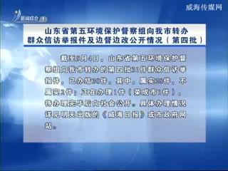 山东省第五环境保护督察组向我市转办群众信访举报件及边督边改公开情况(第四批)