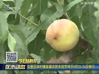 一组快讯:环翠区举办第四次经济普查培训班