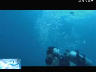 魅力海洋 2018-09-11(19:45:01-20:00:00)