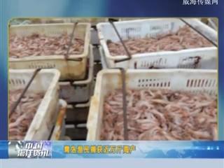 中国海洋资讯 2018-09-13(20:00:01-20:20:00)
