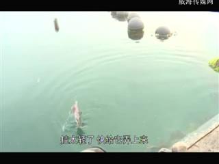 我要去钓鱼 2018-09-08(20:20:01-20:50:00)