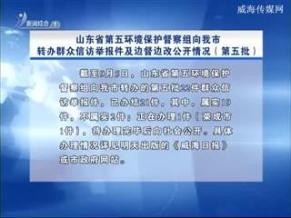山东省第五环境保护督察组向我市转办群众信访举报件及边督边改公开情况(第五批)