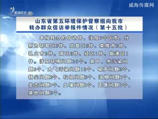 山东省第五环境保护督察组向我市转办群众信访举报件情况(第十五批)
