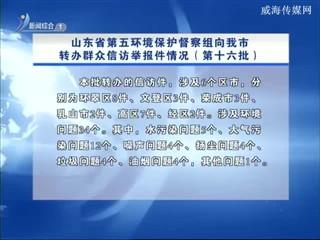 山东省第五环境保护督察组向我市转办群众信访举报件情况(第十六批)