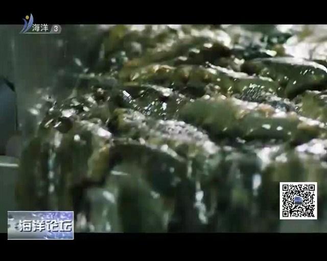 海洋论坛 2018-10-31(19:30:00-19:45:00)