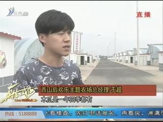 """文登区米山镇西山后村:""""欢乐农场""""打造四季慢生活"""