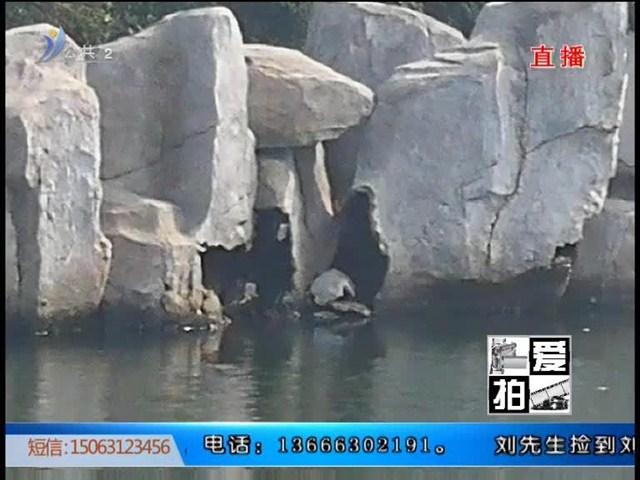 """爱拍:公园景观被当座椅""""小鸭子""""很受伤"""