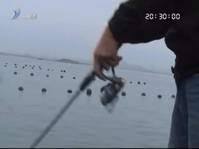 我要去钓鱼 2019-02-16(20:20:00-20:50:00)