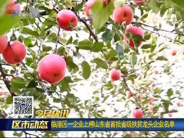 临港区一企业上榜山东省首批省级扶贫龙头企业名单