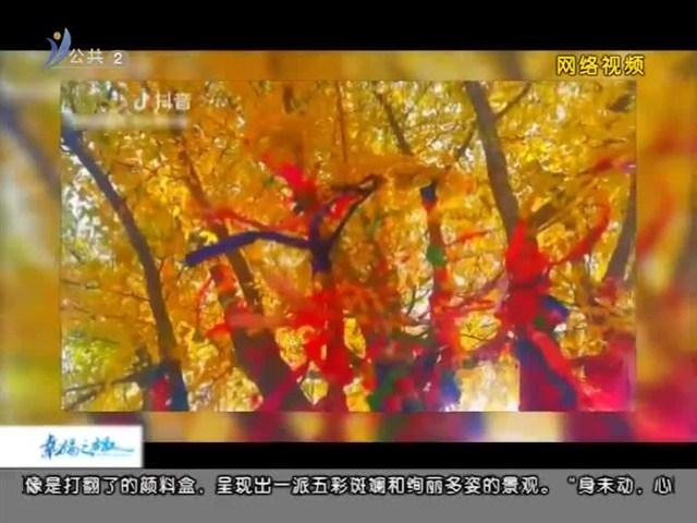 幸福之旅 2018-11-03(18:08:14-18:25:14)