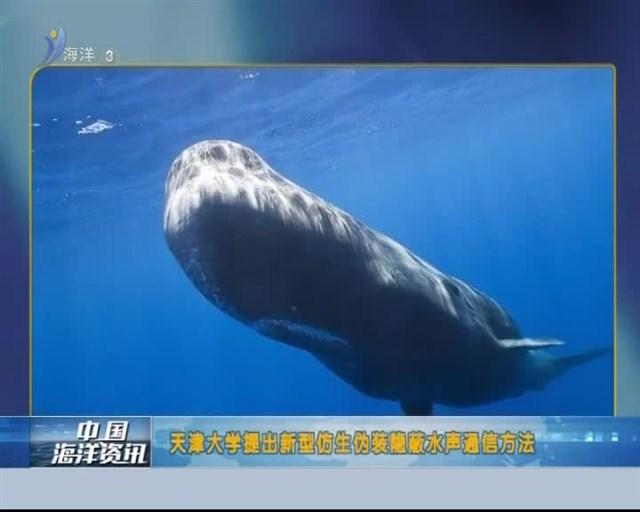 中国海洋资讯 2018-11-03(20:00:00-20:20:00)