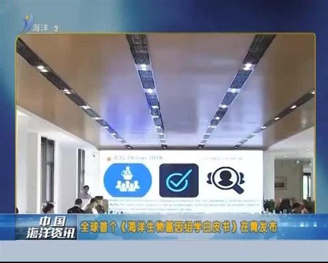 中国海洋资讯 2018-11-02(20:00:00-20:20:00)