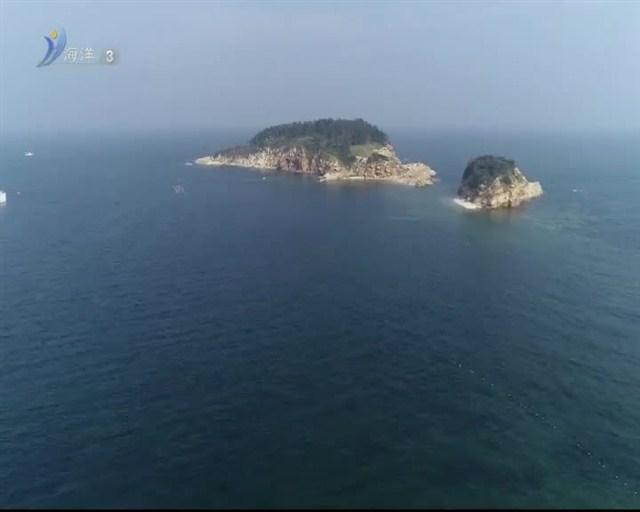 魅力海洋 2018-11-01(19:45:00-20:00:00)