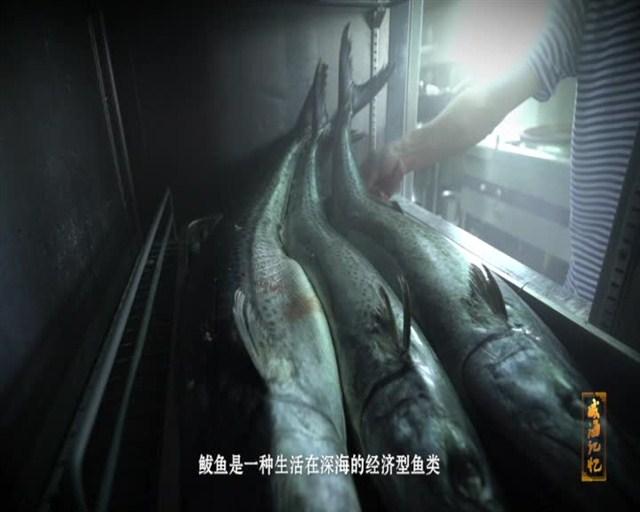 威海记忆:鲅鱼饺子 2018-12-17