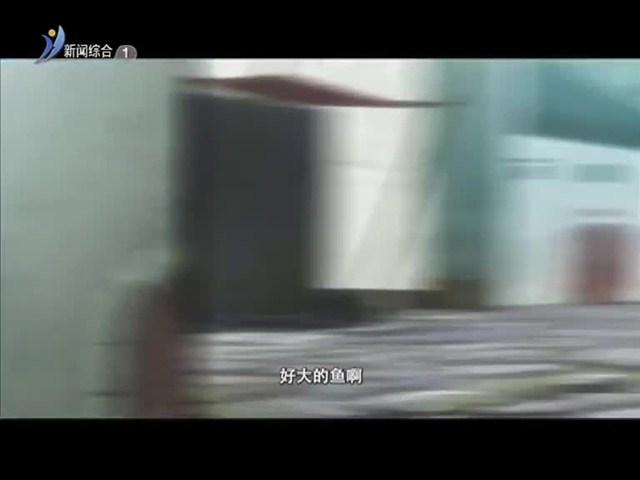 快乐酷宝 2019-01-29(17:28:18-18:01:18)