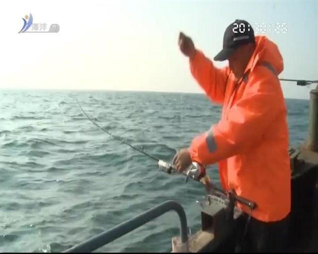 我要去钓鱼 2019-01-20(20:20:00-20:50:00)