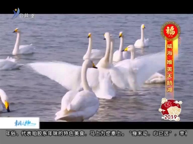 幸福之旅 2019-02-09(18:08:14-18:25:14)