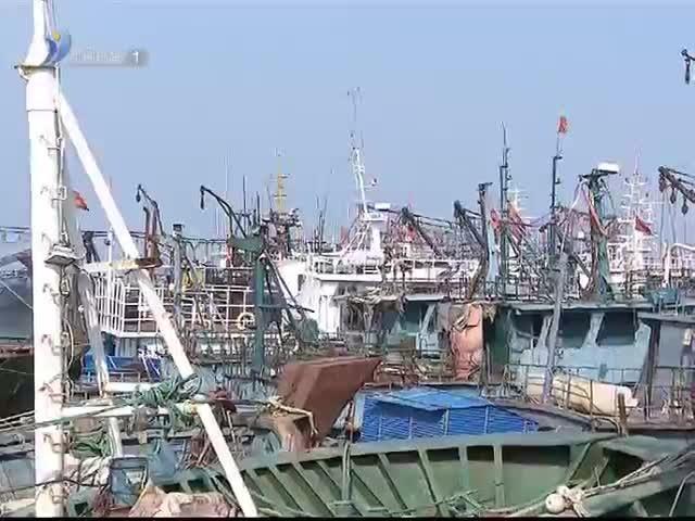张海波现场研究推进涉海重点项目建设