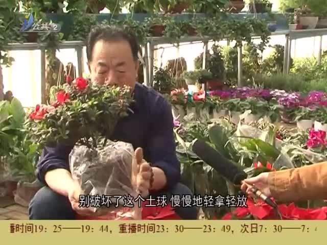 生活有道 2019-03-13