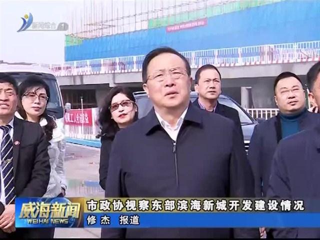 市政协视察东部滨海新城开发建设情况